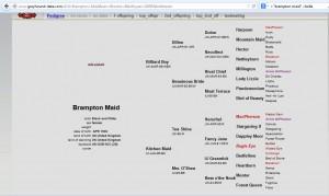 bramptonmaid